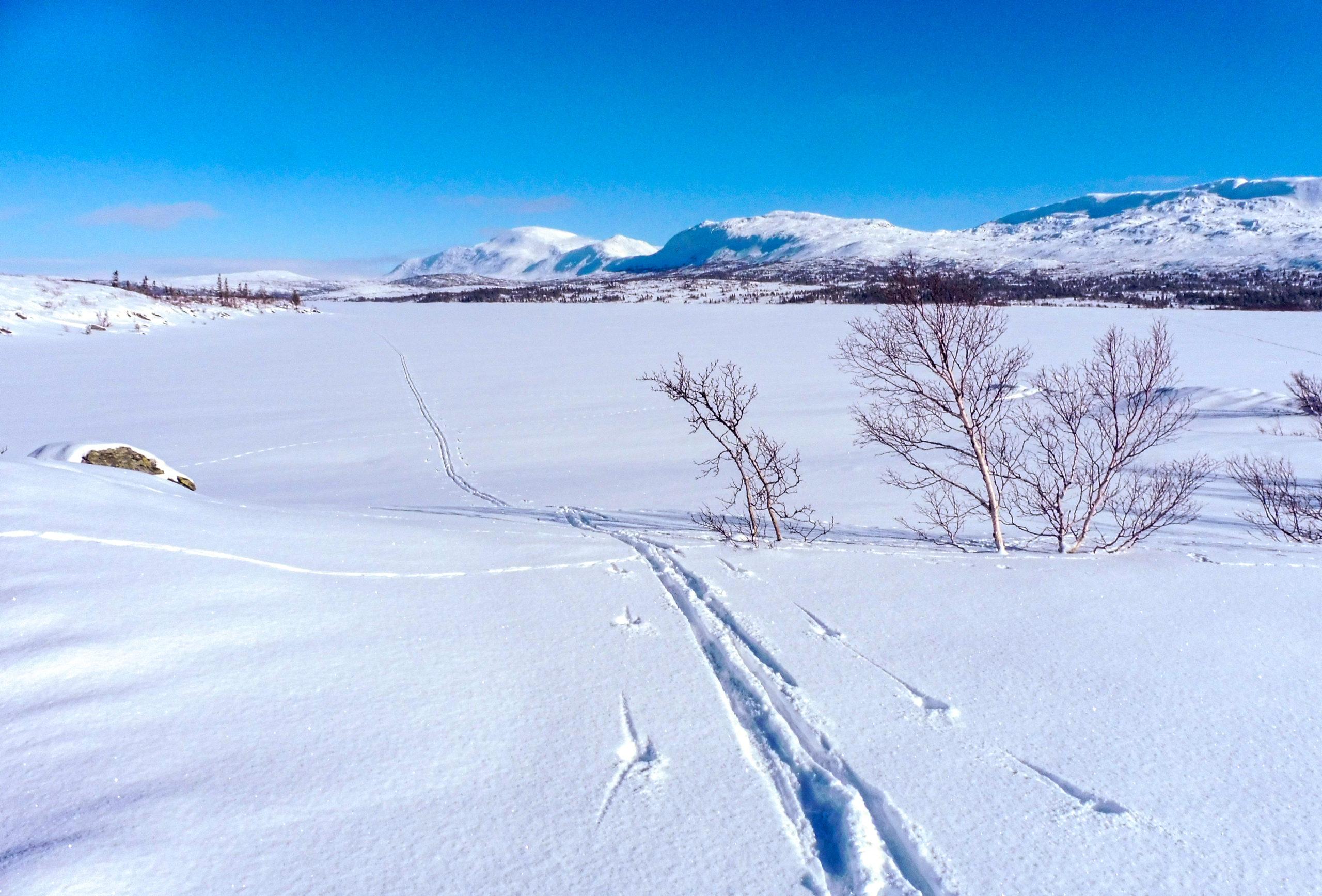 På ski over Skjækervatnet